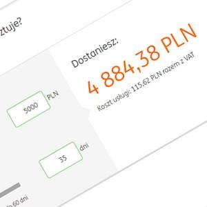 pożyczki dla bezrobotnych przez internet
